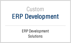Custom ERP Application